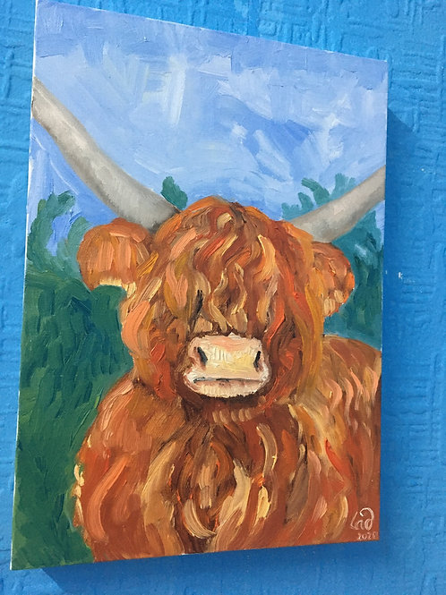 Highland  cow  oil original