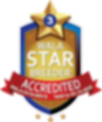 Lake Blue WALA Star Logo.3.00515.png