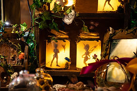 lanterns Peter Pen and Fairy Tinker Bell.jpg