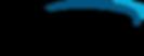 bridgeport-logo-retina.png
