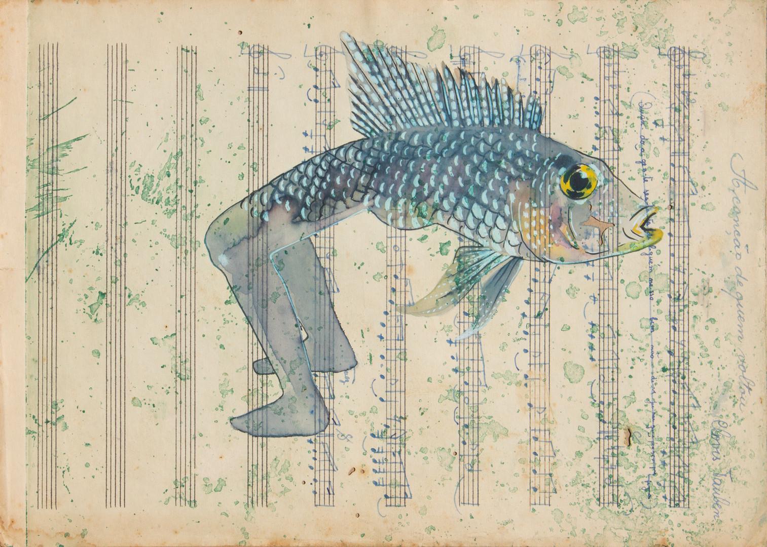 queria ser um peixe 17