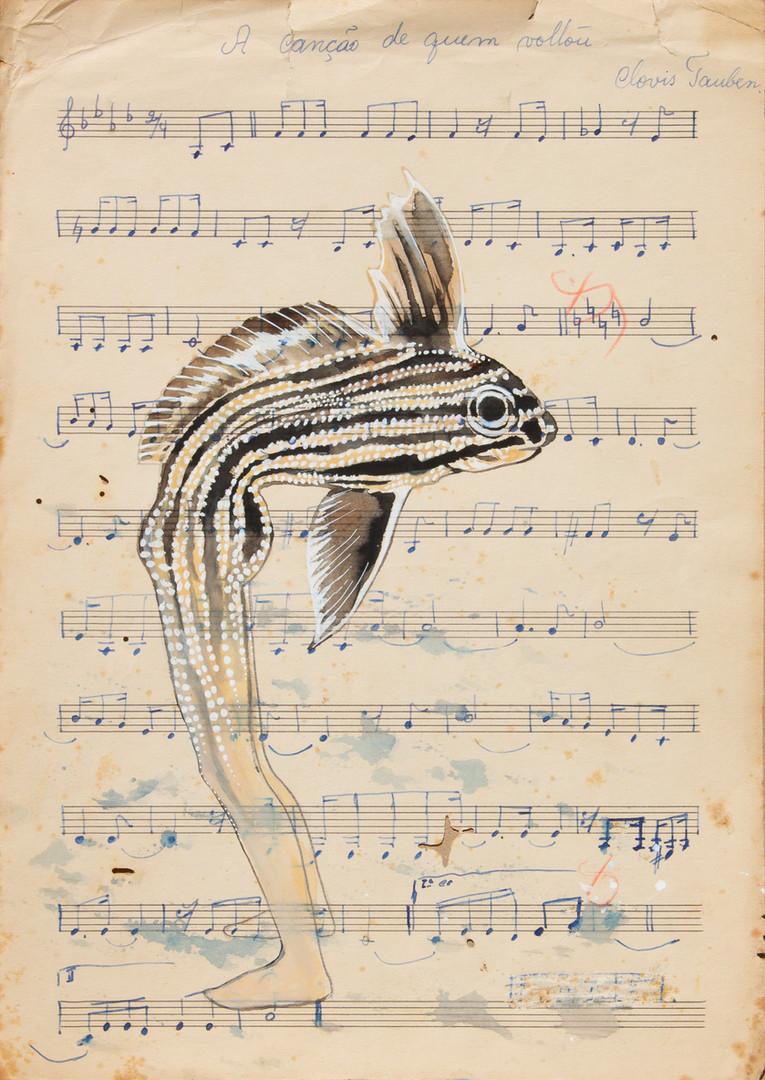 queria ser um peixe 16