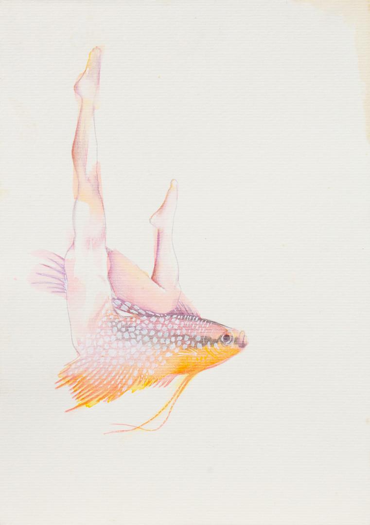 queria ser um peixe 2.jpg