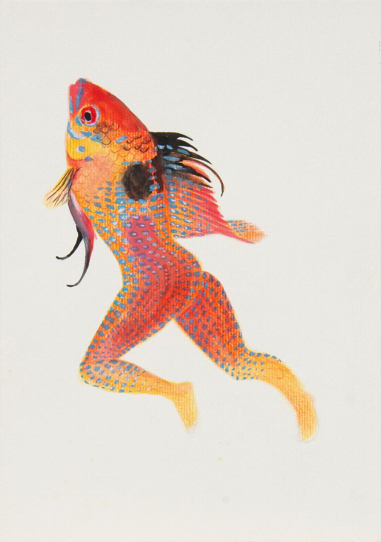 queria ser um peixe 9