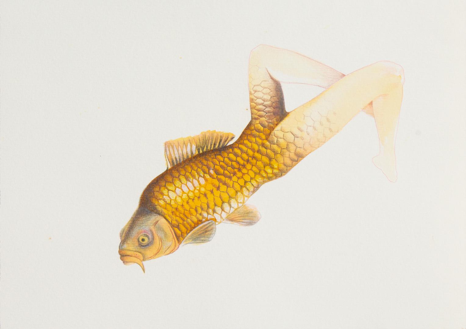 queria ser um peixe 5