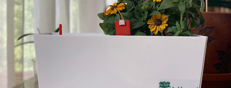 Lilani Indoor, Smart, Self-watering Plant Pot