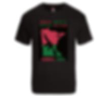 aahgc-shirt.png