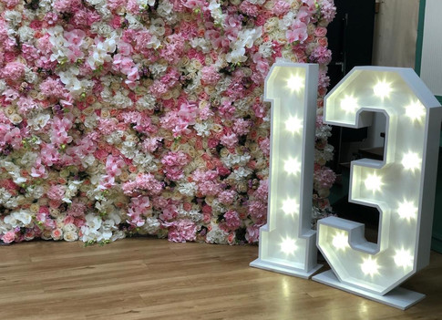 LED 13 light up numbers