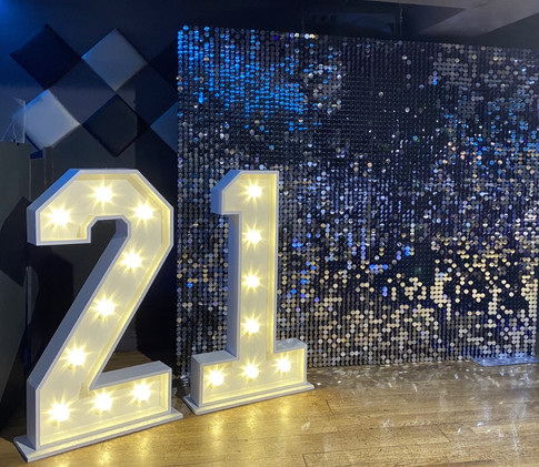21 shimmer wall-min.jpg