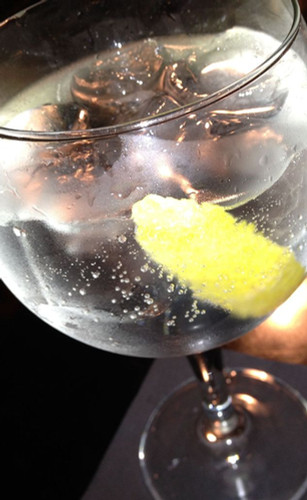 Gin_and_tonic_with_lemon.jpg