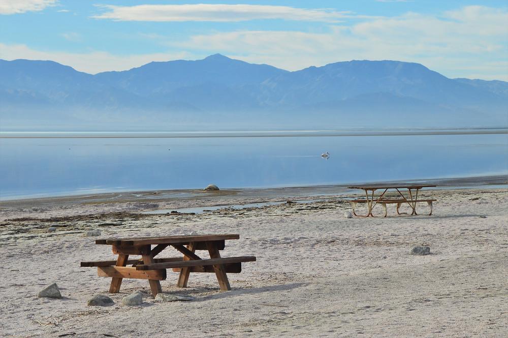 Empty picnic tables at Salton Sea beach