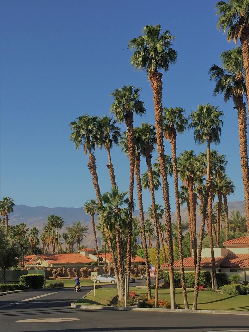 Park Palms Condo community in Palm Desert