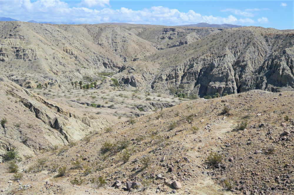 Views of Pushawalla Canyon from the Pushawall Palm trail