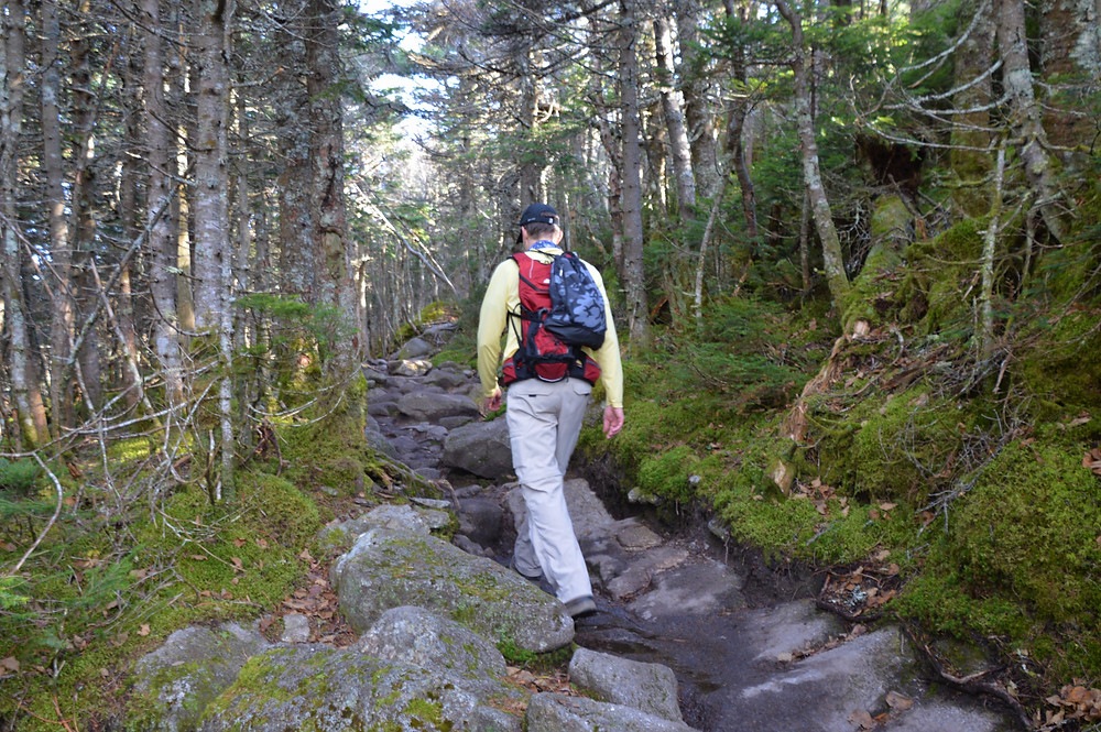 Mt Lafayette via Old Bridle Path. Eroded and rock covered trail in White Mountains of NH