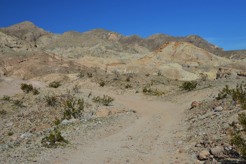 Following an old World War II road to Calcite Mine Palm Wash Loop at Anza-Borrego State Park