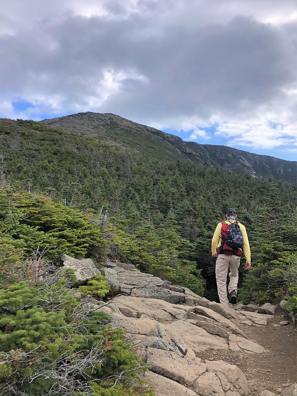 At treeline on Greenleaf Pat leading to Mt Lafayette summit