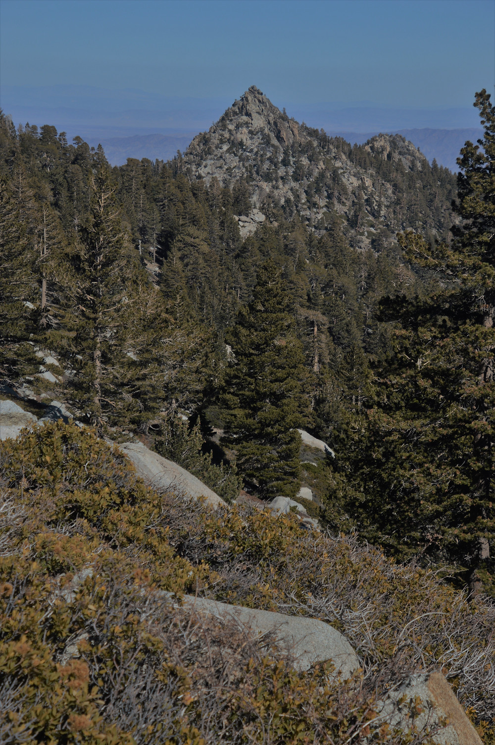 Cornell Peak, one of the more striking features on the San Jacinto summit trail