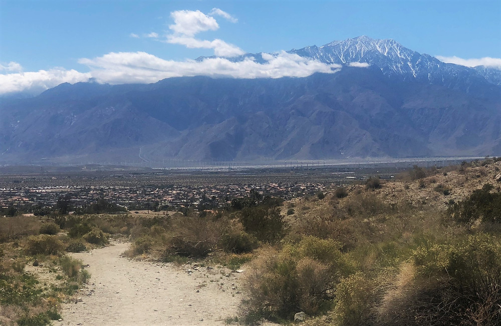 Snowy San Jacinto summit from Desert Hot Springs Swiss Canyon trail