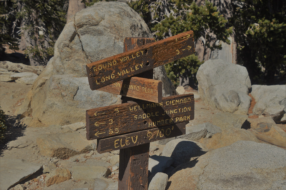 Reaching Wellman Divide at 9,700 ft in elevation on trail leading to San Jacinto summit