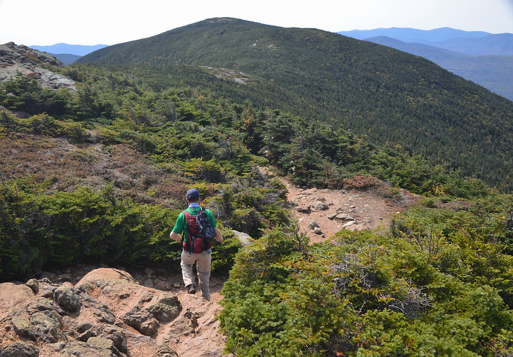 Trail from Mt Eisenhower summit to Crawford Path