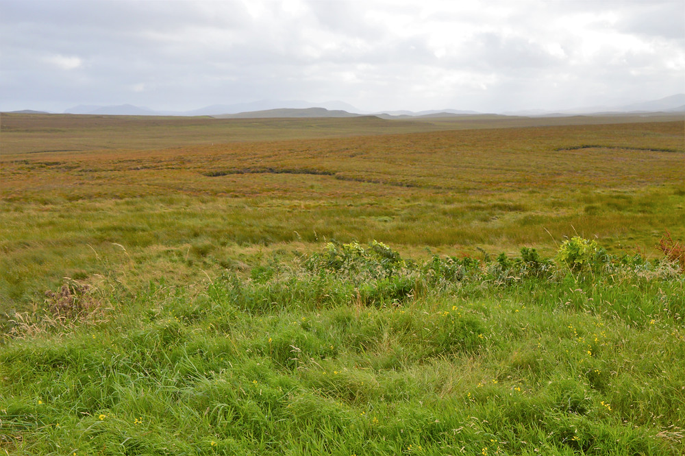 Blanket Peat bogs cover more than 1/3 of Isle of Lewis