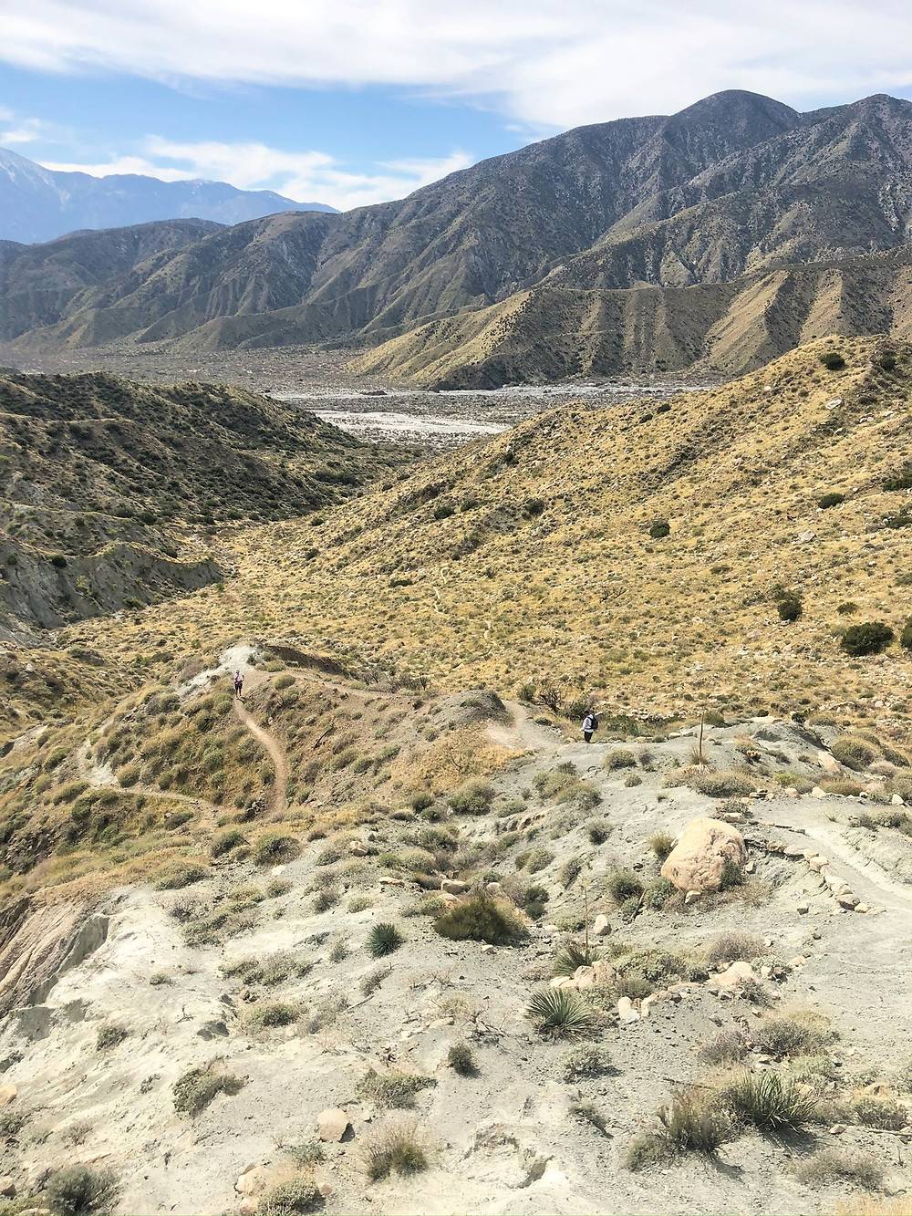 Canyon was of Whitewater River from hills above Whitewater Preserve