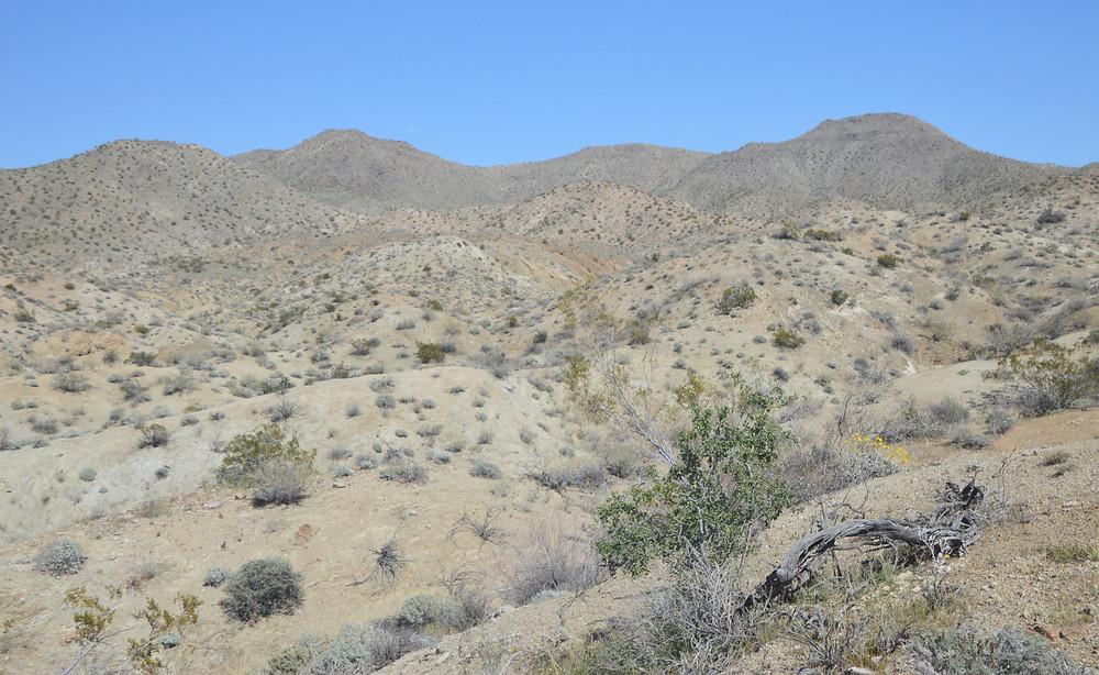 Northern Santa Rosa foothills along Cathedral Canyon Loop Trail