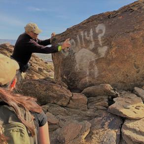 FODM: Trail Maintenance - Removing Graffiti