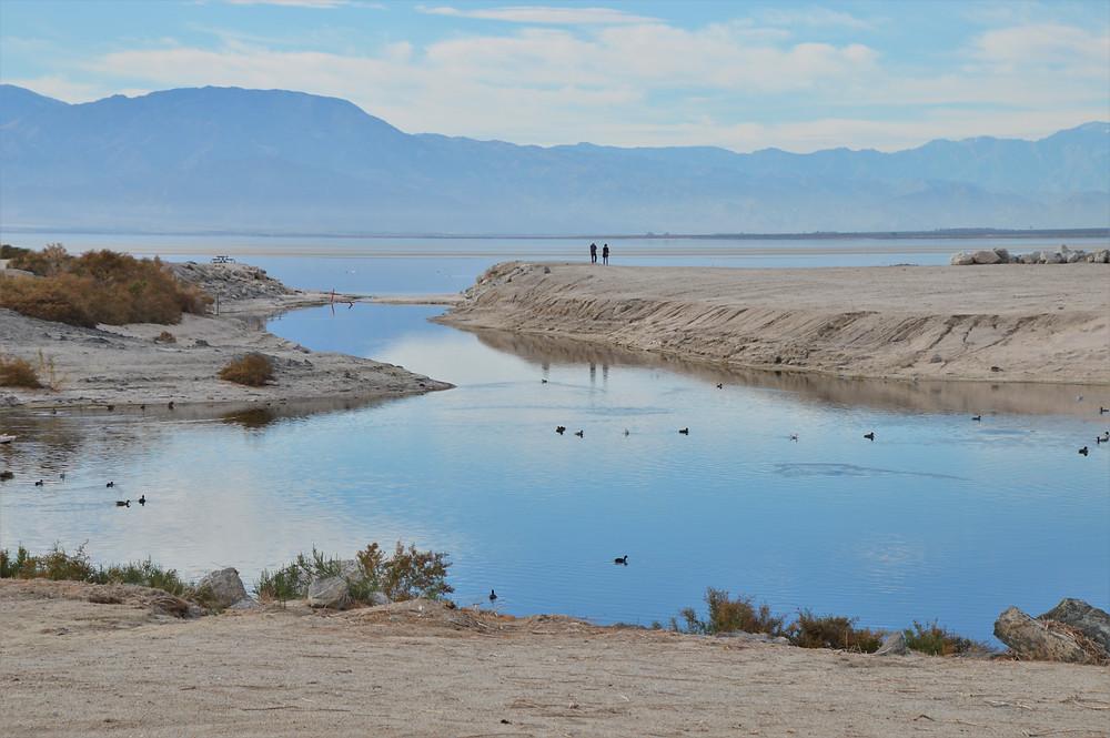 Low water levels at Salton Sea beach