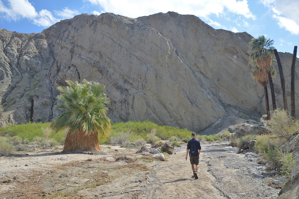Hiking Pushawalla Canyon in the Indio Hills