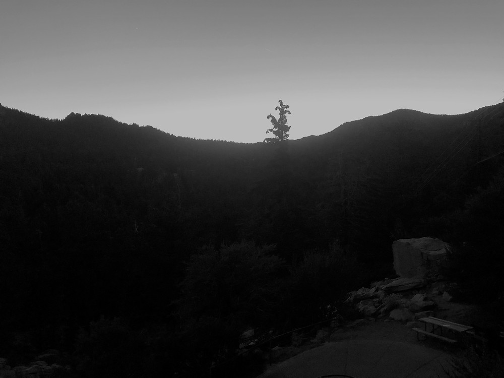Darkness on the trail from teh San Jacinto summit to the Tram Station