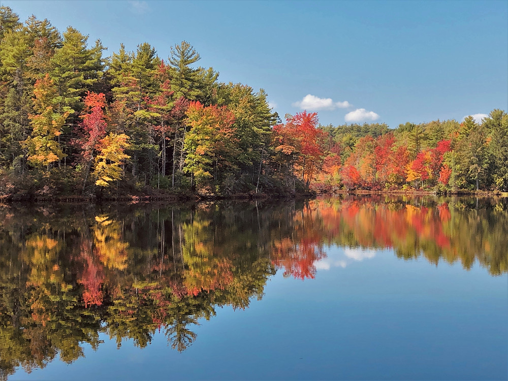 Fall foliage over Snake Pond in Gardner, MA