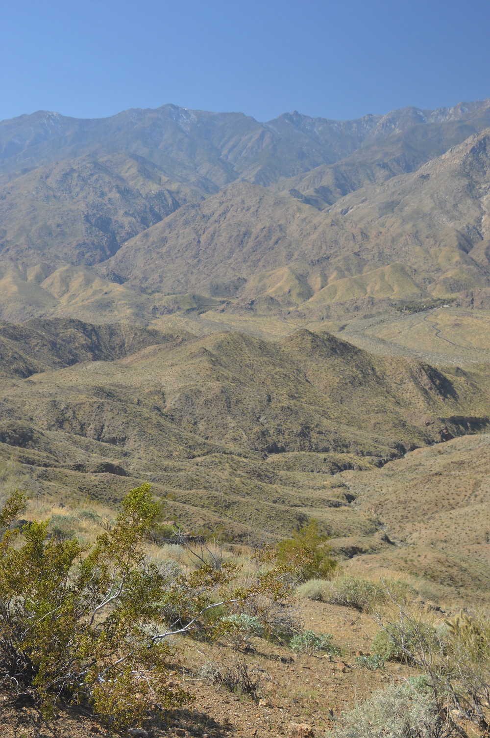 Santa Rosa Mountains from trail leading to Murray Hill