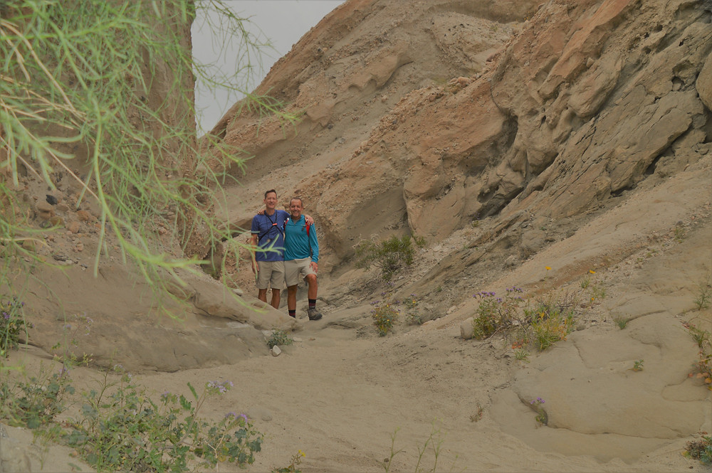 Wind and rain erosion cavities in sedimentary rocks along Indio Hills Badland Loop Trail