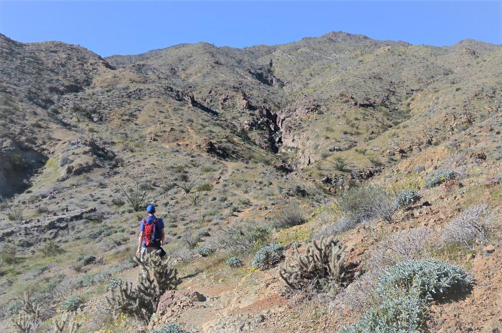 Canyons and gullies along Boo Hoff trail in Santa Rosa Mountains