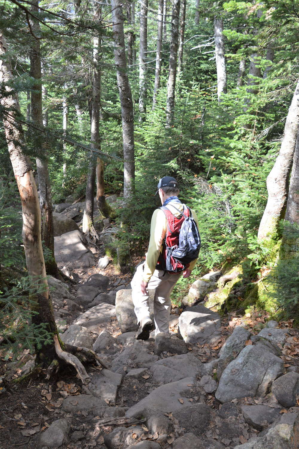 Eroded and rock covered Falling Water Trail in White Mountains of NH