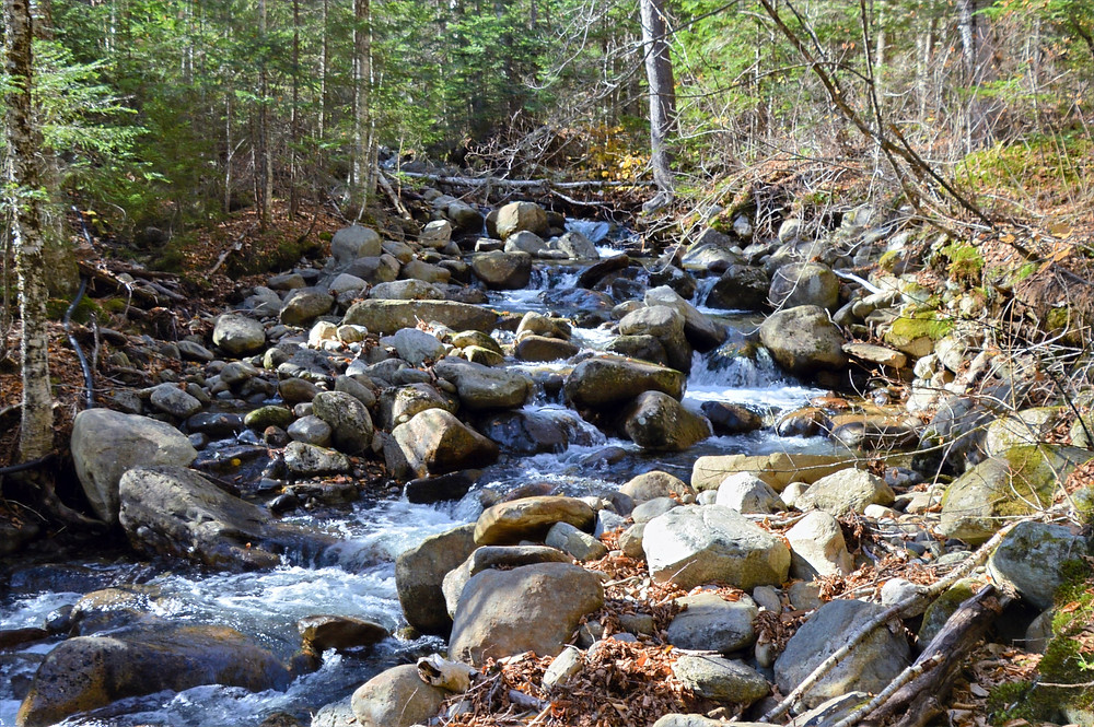 Gorge Brook flowing over rocky section of stream