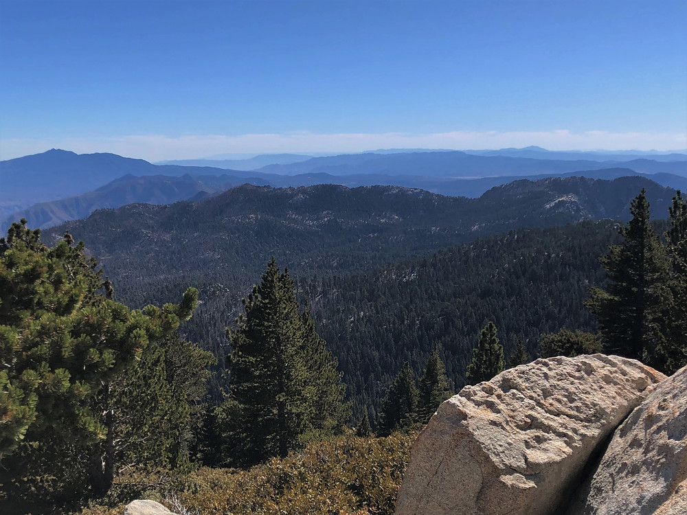 Views of the San Jacinto forest from summit trail