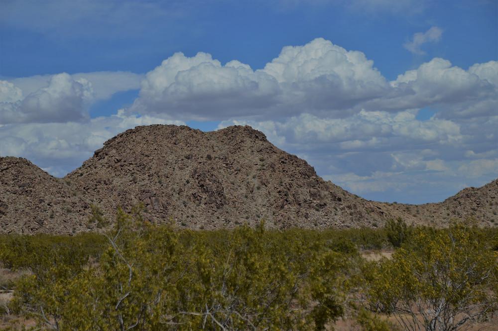 Black Eagle Mine Rd Trail Joshua Tree National Park