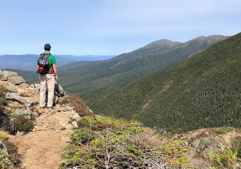 View of White Mountains from Eisenhower Loop Trail