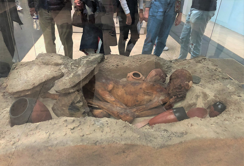 The Gebelein predynastic mummies date to approximately 3400 BC in The British Museum