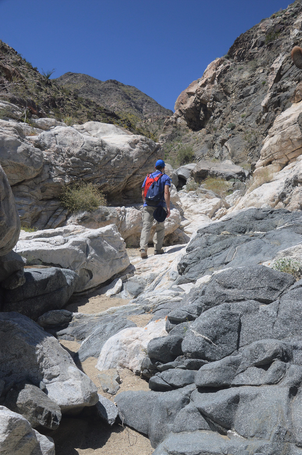 Marble dykes in the Lost Canyon trail in Santa Rosa Mountains