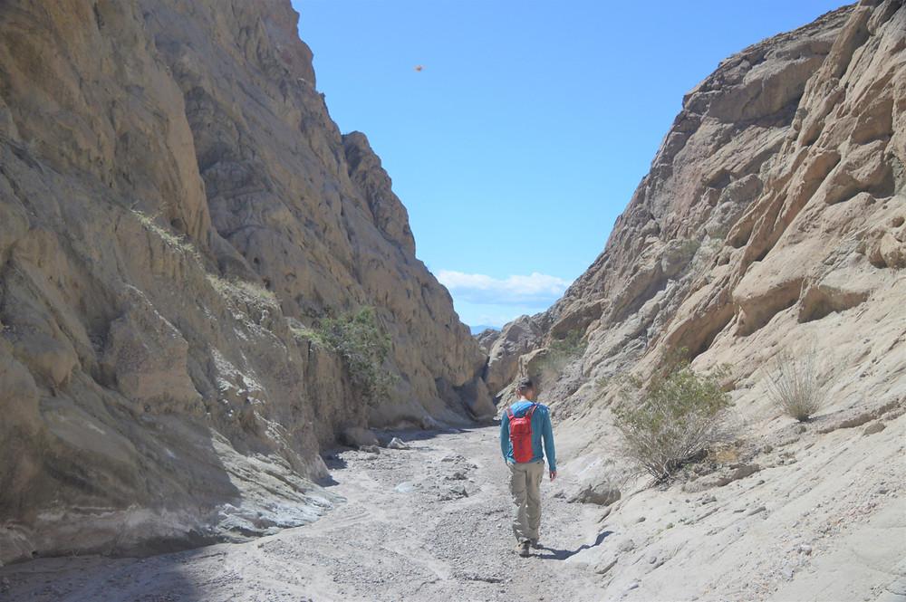 Wash running through Mecca Hills near Coffee Bean Canyon, Red Canyon