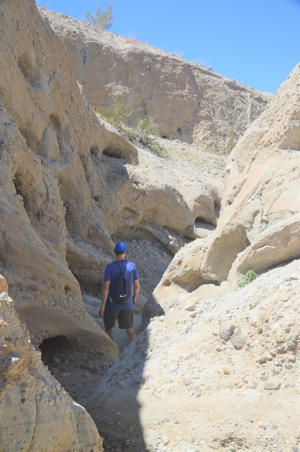 Wind and water erosion in sedimentary rock along the Indio Hills Badland Loop Trail
