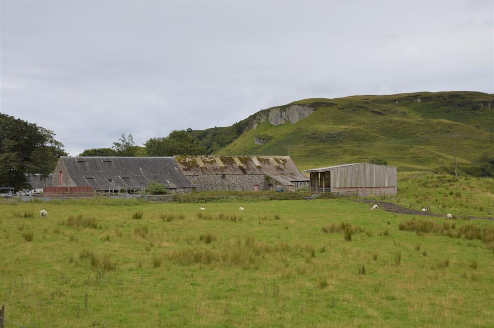 Green hills at Ardantrive farm on Isle of Kerrera in Scotland