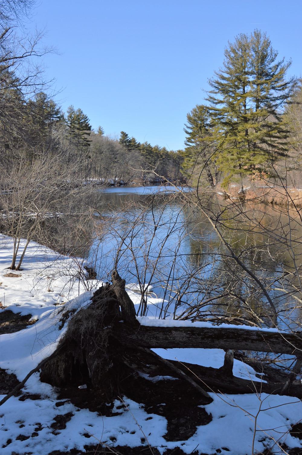 Nashua River along Mine Falls Park in Nashua NH
