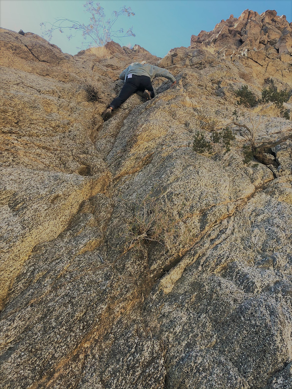 rock climbing in steep sided canyon in Santa Rosa Mountains near La Quinta Cove. Friends of the Desert Mountains