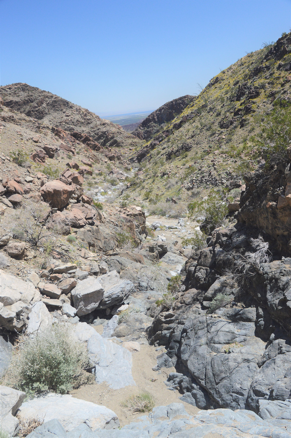 View from the rock wall looking back at Lost Canyon in the Santa Rosa Mountains