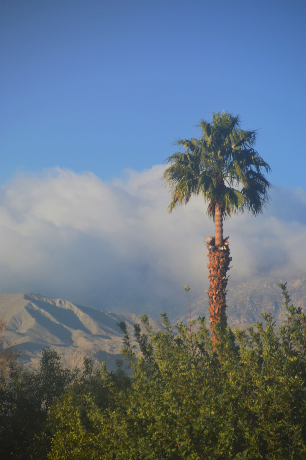 Clouds over the San Jacinto Mountains viewed from Palm Desert