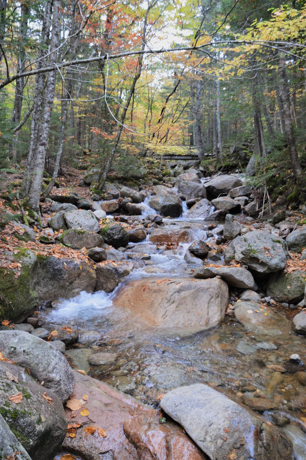 Walker Brook along Old Bridle Path to Mt Lafayette